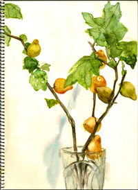 1209_watercolor