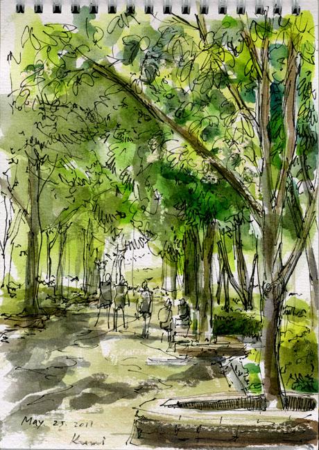 A_treelined_path