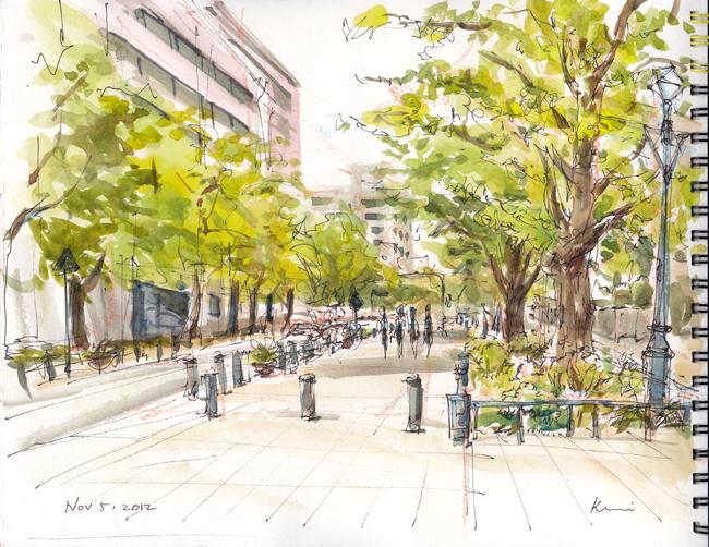 Ginko_tree_lined_road