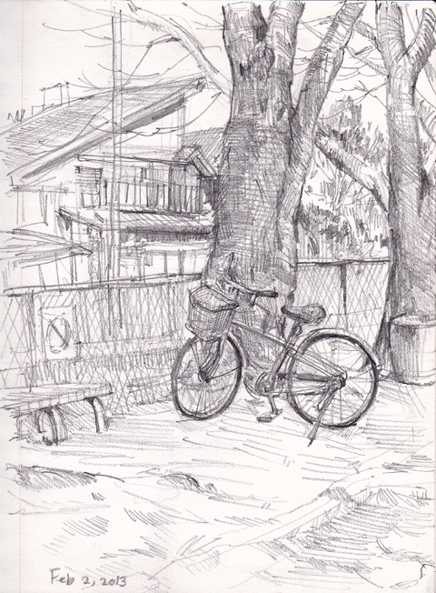 Bicycle_and_cherry_trees