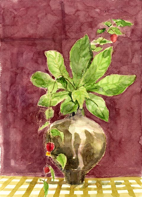 Plants_and_a_vase