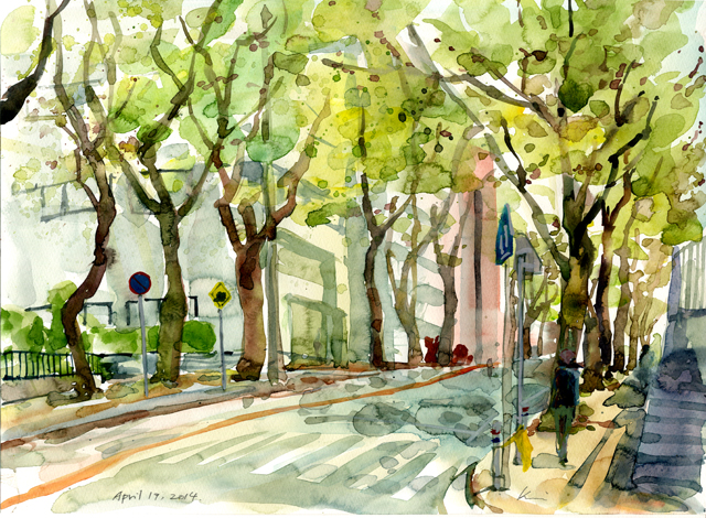 Cherry_tree_lined_up_street