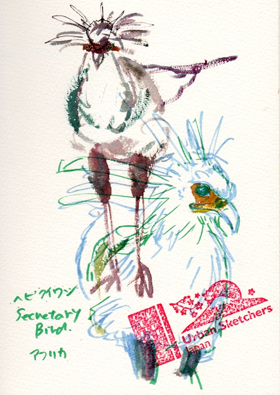 Ueno-zoo13